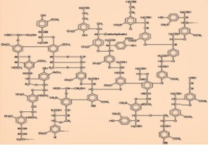 Graphitic bonding in Lignin